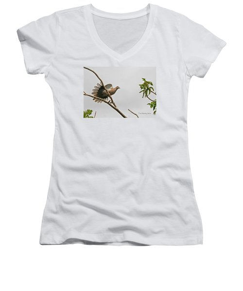 Women's V-Neck T-Shirt (Junior Cut) featuring the photograph The New Dove In Town by Tom Janca