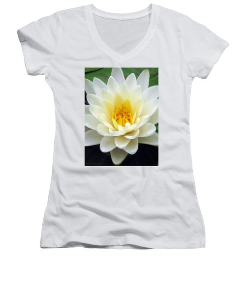 Women's V-Neck T-Shirt (Junior Cut) featuring the photograph The Water Lilies Collection - 03 by Pamela Critchlow