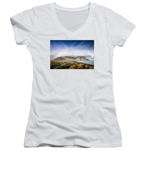 The Young Man Agreed Women's V-Neck