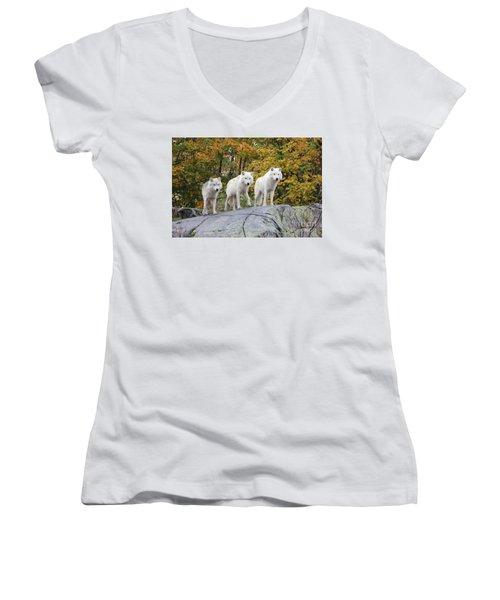 Three Of A Kind Women's V-Neck T-Shirt