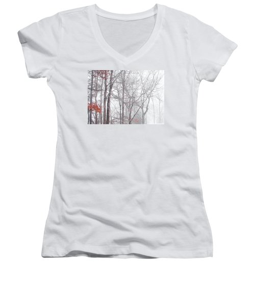 Touch Of Fall In Winter Fog Women's V-Neck (Athletic Fit)