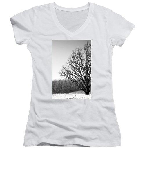 Tree In Winter 2 Women's V-Neck (Athletic Fit)