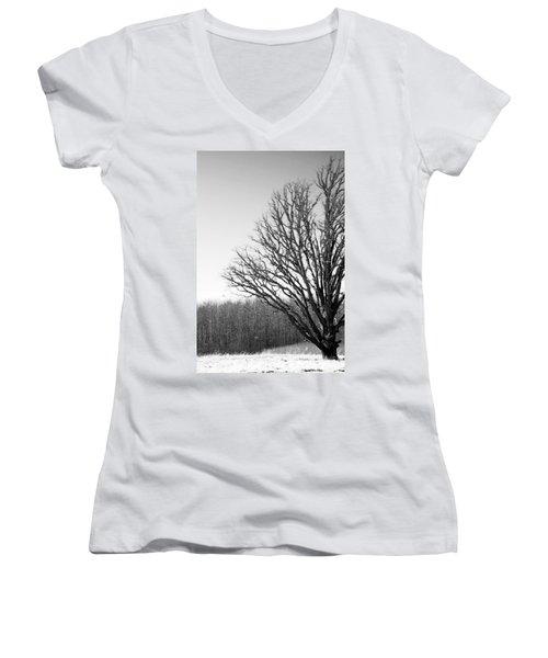 Tree In Winter 2 Women's V-Neck T-Shirt