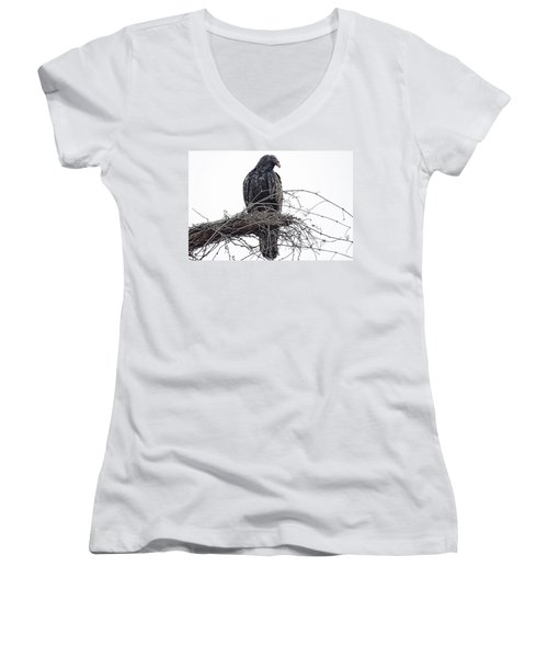 Turkey Vulture Women's V-Neck T-Shirt (Junior Cut) by Douglas Barnard