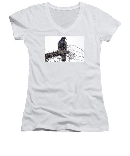 Turkey Vulture Women's V-Neck T-Shirt