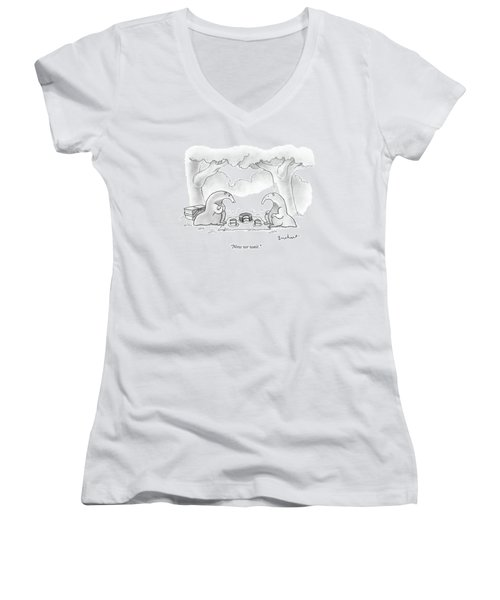 Two Anteaters On A Picnic Wait For Ants To Come Women's V-Neck (Athletic Fit)