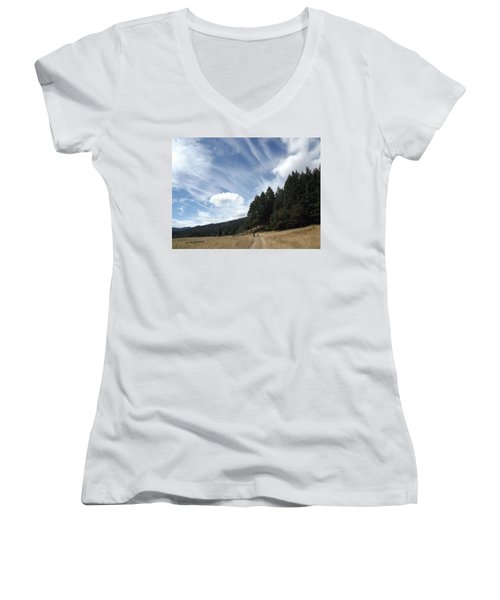 Women's V-Neck T-Shirt (Junior Cut) featuring the photograph Two Of A Kind by Richard Faulkner