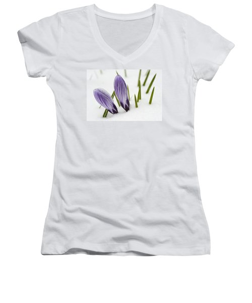 Two Purple Crocuses In Spring With Snow Women's V-Neck
