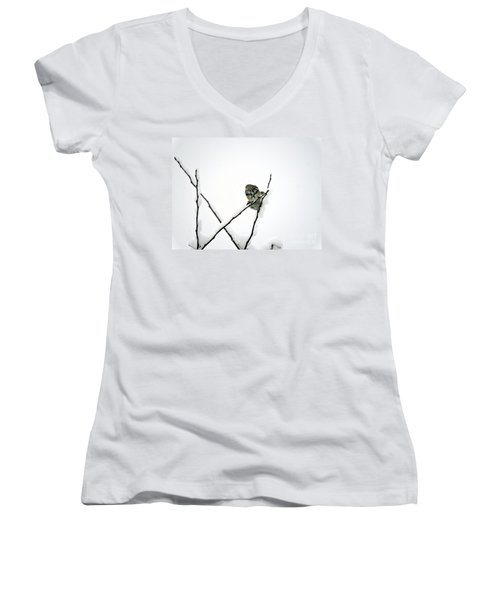 Two Sparrows Women's V-Neck