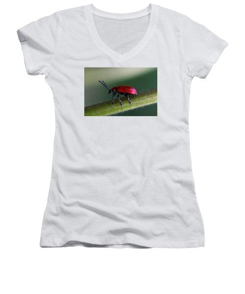 Under Way Women's V-Neck T-Shirt