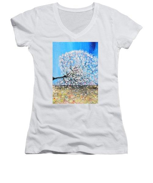 Unstable Position Women's V-Neck T-Shirt