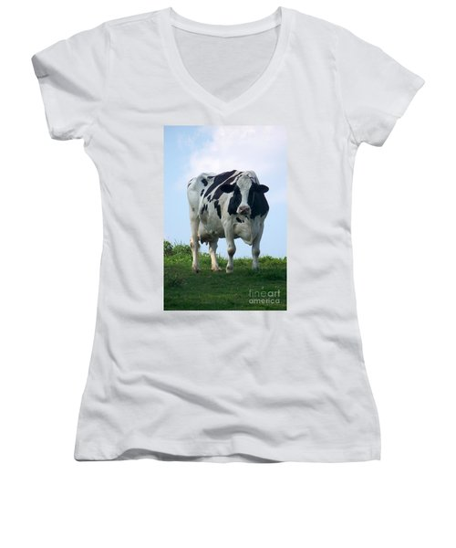 Vermont Dairy Cow Women's V-Neck T-Shirt