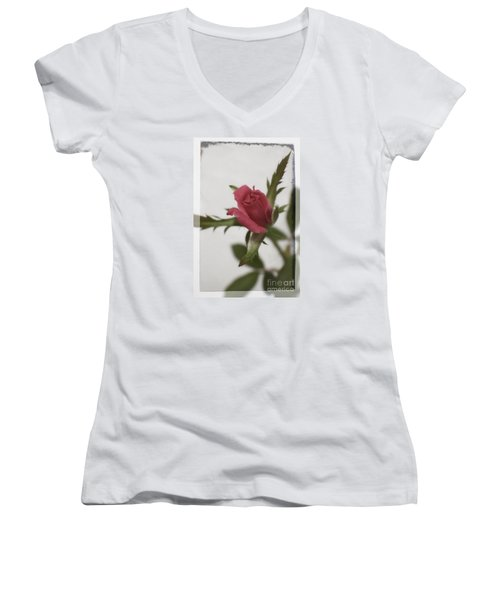 Vintage Antique Rose Women's V-Neck T-Shirt (Junior Cut) by Ella Kaye Dickey