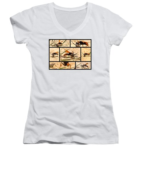 Women's V-Neck T-Shirt (Junior Cut) featuring the photograph Wasp And His Kill by Miroslava Jurcik