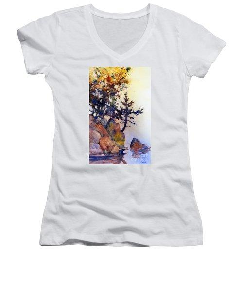 Water's Edge Women's V-Neck T-Shirt (Junior Cut)
