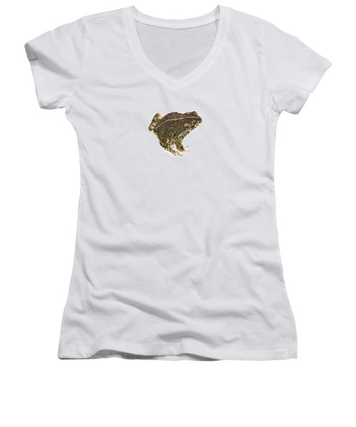 Western Toad Women's V-Neck T-Shirt (Junior Cut) by Cindy Hitchcock