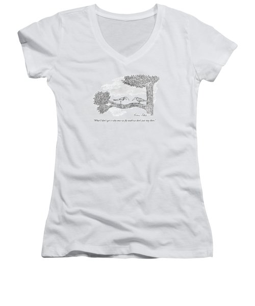 Once We Fly South Women's V-Neck