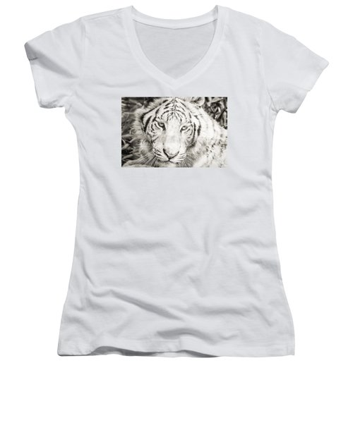 White Tiger Women's V-Neck (Athletic Fit)