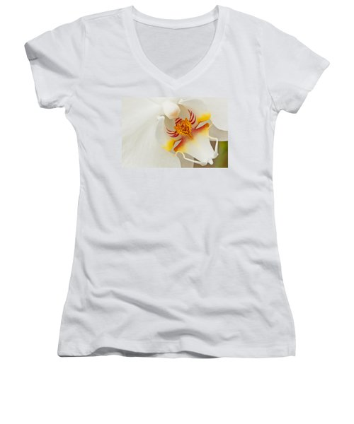 White Orchid 2 Women's V-Neck