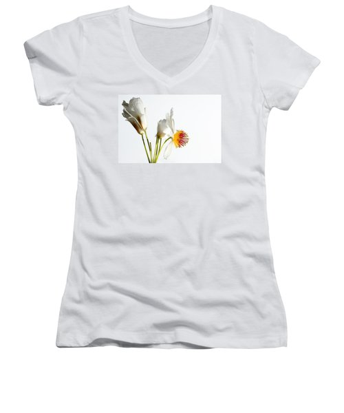 White Sparmannia Africana Plant. Women's V-Neck (Athletic Fit)