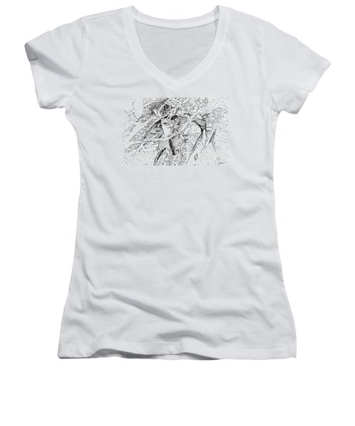 White-tail Encounter Women's V-Neck T-Shirt (Junior Cut) by Bern Miller