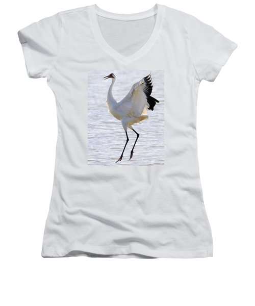 Whooping Crane - Whooping It Up Women's V-Neck T-Shirt