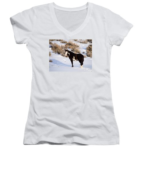 Wild Horse Stallion Women's V-Neck