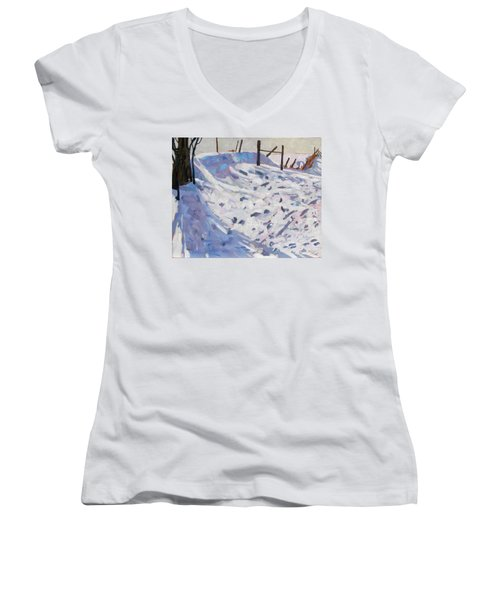 Wild Life Women's V-Neck T-Shirt (Junior Cut)