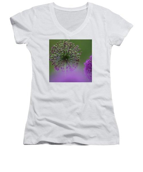 Wild Onion Women's V-Neck T-Shirt (Junior Cut) by Heiko Koehrer-Wagner