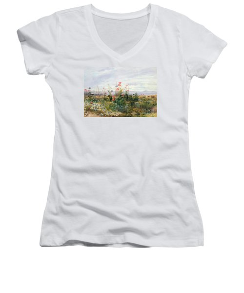 Wildflowers With A View Of Dublin Dunleary Women's V-Neck