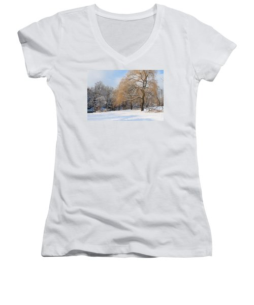 Winter Along The River Women's V-Neck T-Shirt (Junior Cut) by Nina Silver
