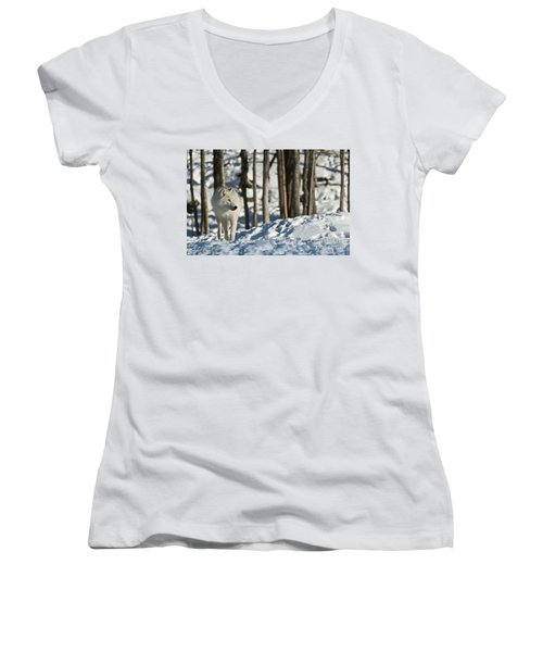 Women's V-Neck T-Shirt (Junior Cut) featuring the photograph Winter Arctic Wolf by Wolves Only
