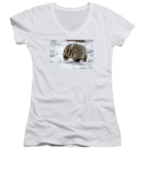 Women's V-Neck T-Shirt (Junior Cut) featuring the photograph Winter Badger by Jack Bell