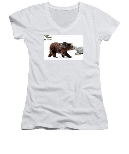 Winter Bear Walk Women's V-Neck T-Shirt