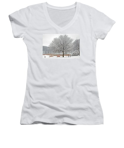 Winter Park Women's V-Neck T-Shirt