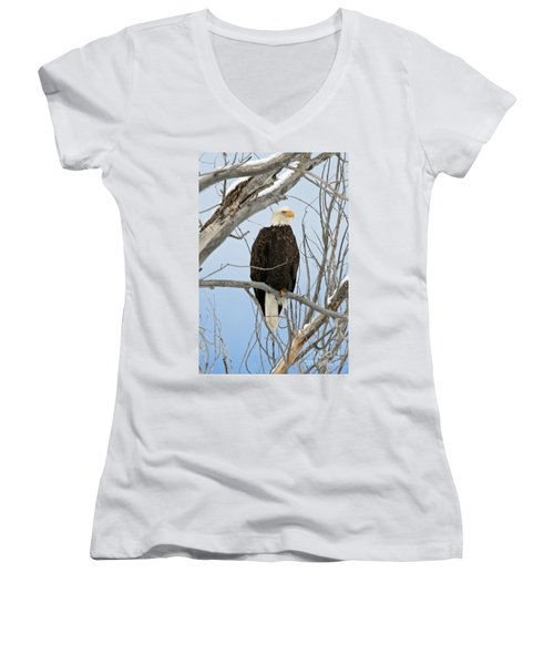 Winter Perch Women's V-Neck T-Shirt (Junior Cut) by Bob Hislop