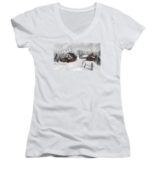 Winter Scene Women's V-Neck T-Shirt