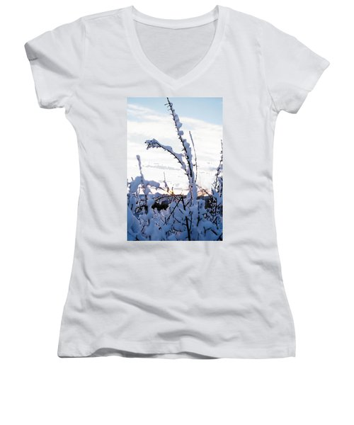 Winter Women's V-Neck T-Shirt