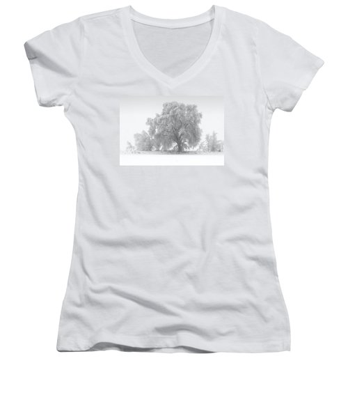 Winter Tree Women's V-Neck
