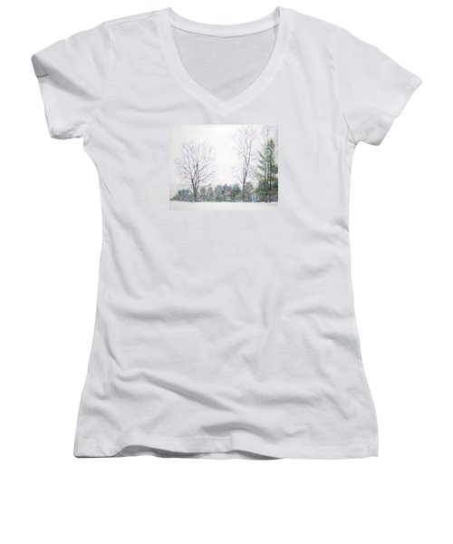 Winter Wonderland Usa Women's V-Neck (Athletic Fit)