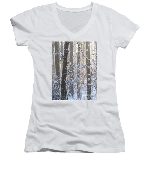Winter Woodland Women's V-Neck (Athletic Fit)