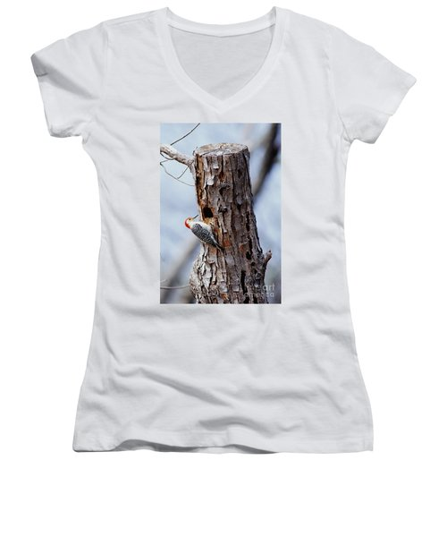 Woodpecker And Starling Fight For Nest Women's V-Neck T-Shirt