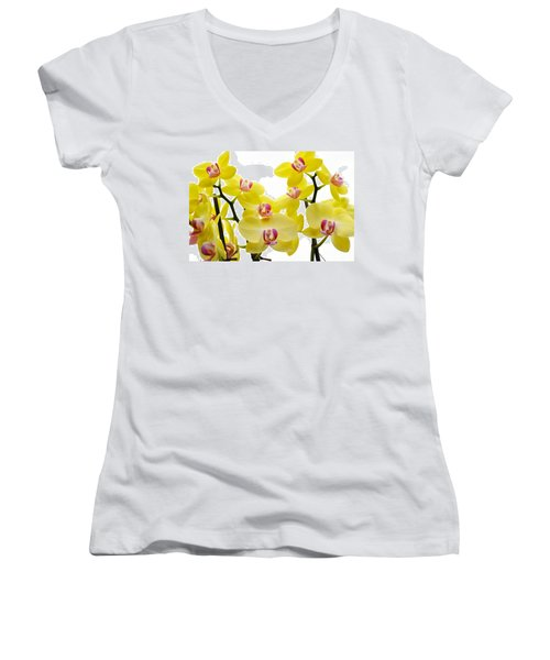 Yellow Beauties Women's V-Neck (Athletic Fit)