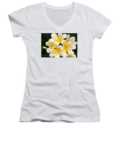 Women's V-Neck T-Shirt (Junior Cut) featuring the photograph Clivia Yellow Flowers by Jeannie Rhode