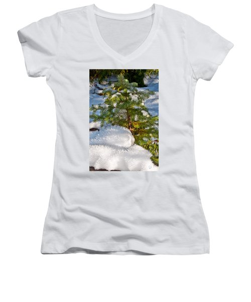 Young Winter Pine Women's V-Neck