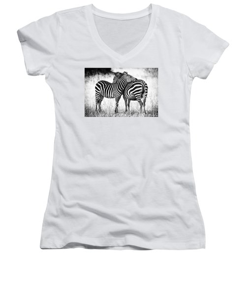 Zebra Love Women's V-Neck T-Shirt