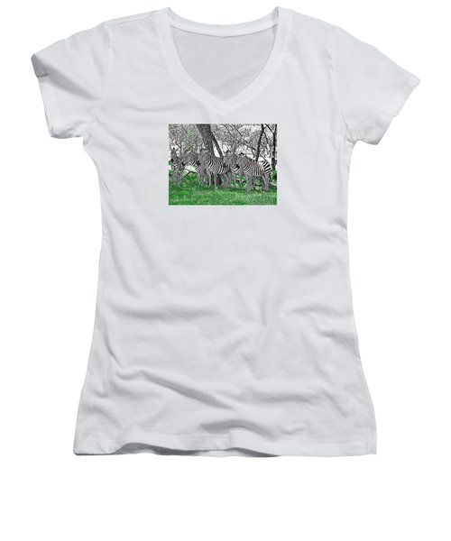 Women's V-Neck T-Shirt (Junior Cut) featuring the photograph Zebras by Kathy Churchman