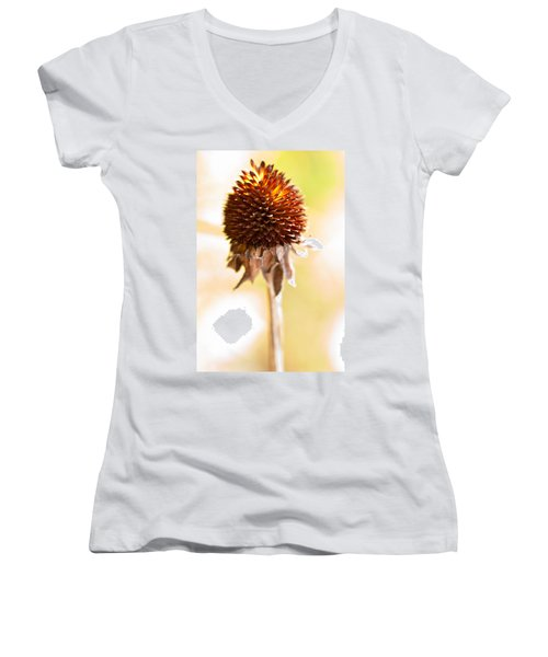 Black-eyed Susan After The Winter Women's V-Neck
