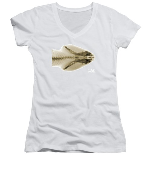 Eastern Diamondback Rattlesnake Head Women's V-Neck T-Shirt (Junior Cut) by Ted Kinsman