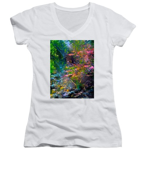 Abstract 86 Women's V-Neck T-Shirt (Junior Cut) by Pamela Cooper